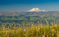 Где находится гора Эльбрус?