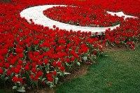 Температура в Туреччині в травні