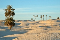 Temperatura-vody-v-Tunise-v-mae