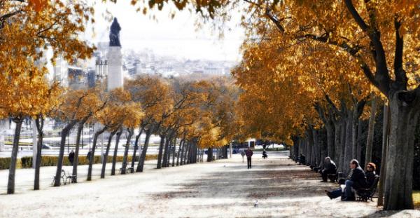 Погода в Португалии (Лиссабоне) в ноябре