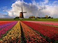 Королевство Нидерланды — достопримечательности