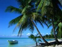 Для тусовщиков и ценителей покоя: отели Доминиканы 4 и 5 звезд, все включено
