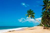 Время для путешествий: погода на Шри-Ланке по месяцам