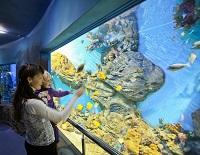 океанариум в москве самый большой где находится как доехать