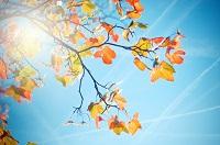 Осенний отдых в Крыму: какая погода в Ялте в октябре?