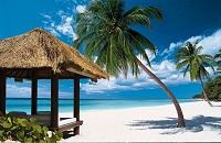 Климат в субтропиках - погода в Доминикане по месяцам