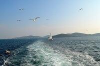 Изучаем прибрежные территории - какие моря омывают Турцию?