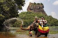 Погода в январе в экзотической Шри-Ланке