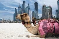 Туристический сезон в ОАЭ - погода в октябре