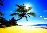 Погода на размеренной Шри-Ланке в феврале