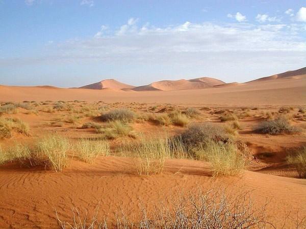 описание бескрайних песков