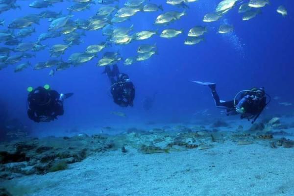 развлечения под водой