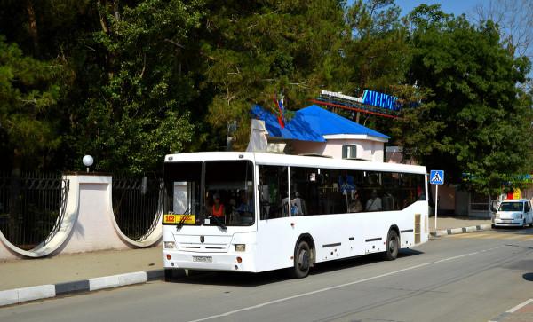 автобус из Геленджика
