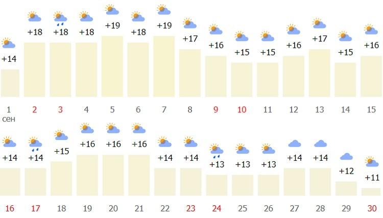 подробные температурные показатели