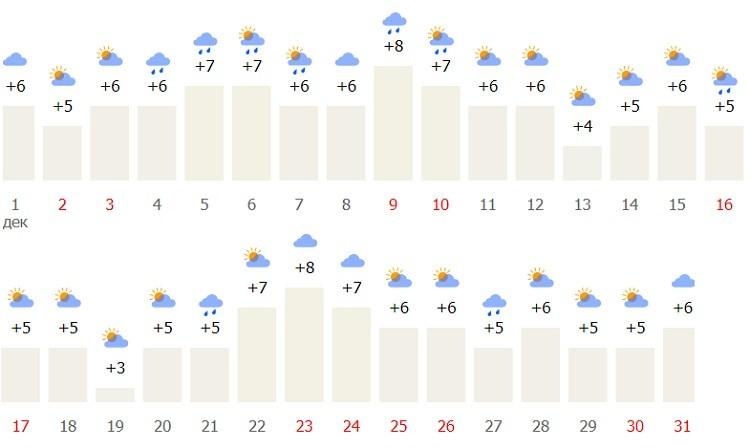 какие погодные условия в начале зимы?