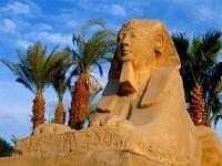 погода в июне в Египте