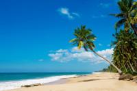 погода в марте в Шри-Ланке