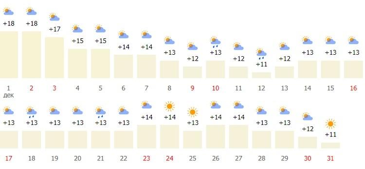 какой погодный режим в начале зимы?