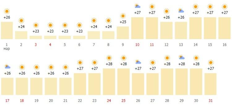 мартовский климат в эмирате