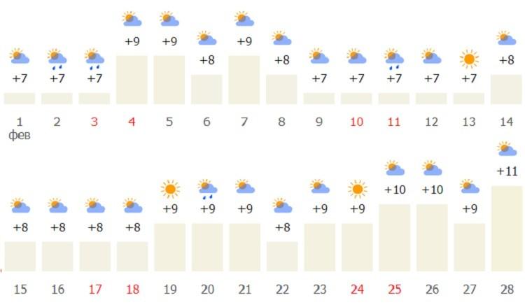 февральский температурный режим