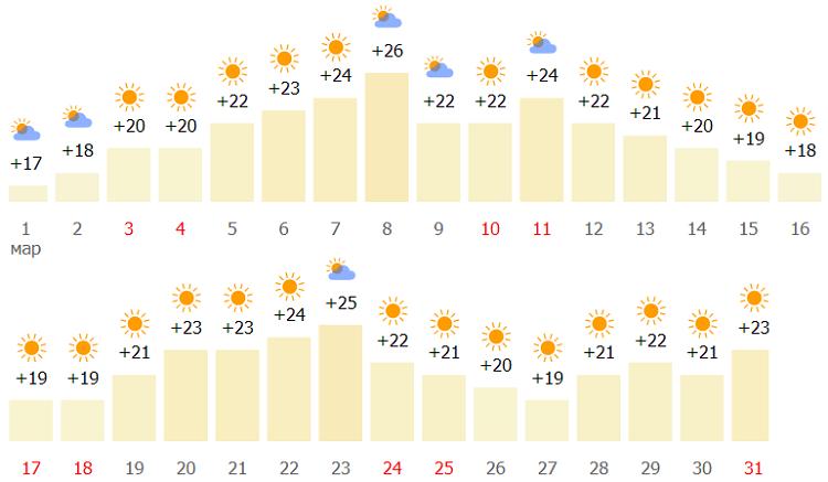 какой прогноз на Красном море в начале весны?