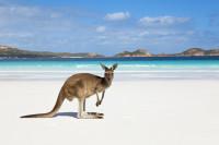 погода в Австралии по месяцам