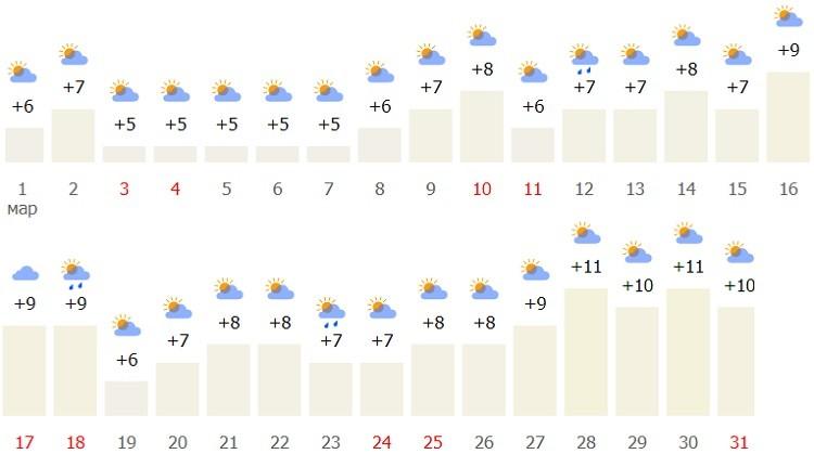 метеорологический прогноз в Стобашенной
