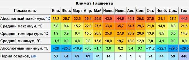 климатические условия Ташкента
