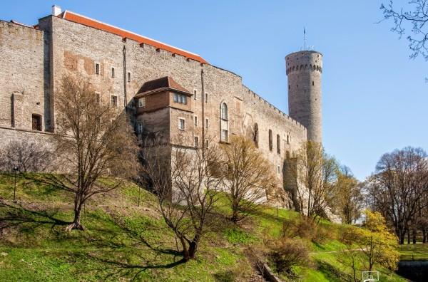 замок Тоомпеа в столице